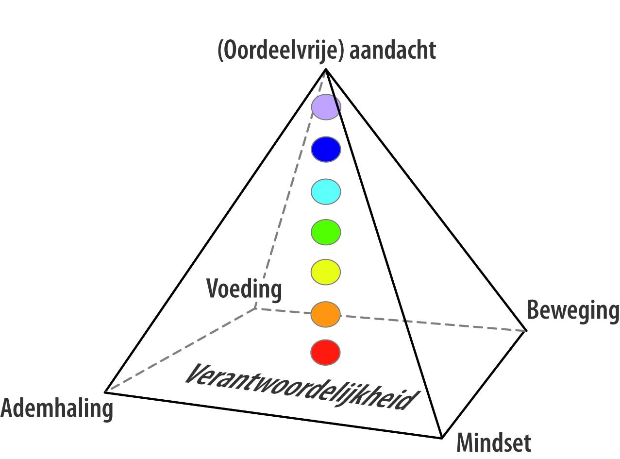 piramide van inzicht